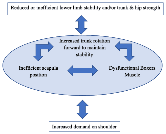 Reduced Inefficient Lower Limb Stability