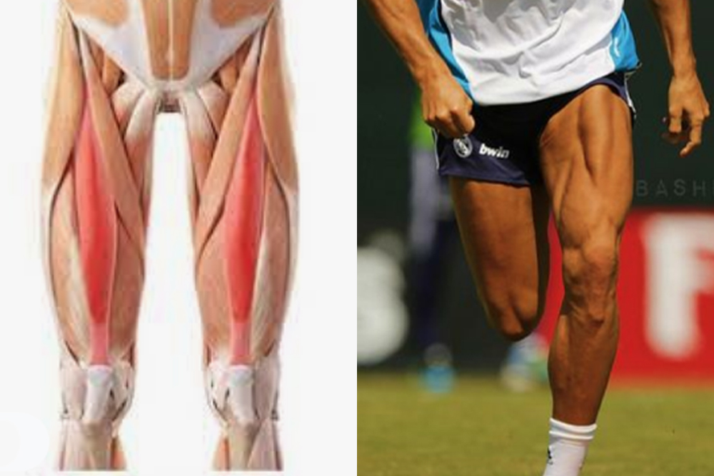 Read more about the article Hurty Hips in Soccer Players